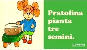 Pratolina pianta tre semini